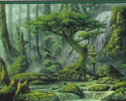 Magic the Gathering 10th Edition Card: Forest (c)