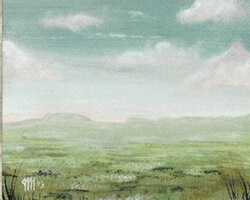 Magic the Gathering 4th Edition Card: Plains (b)