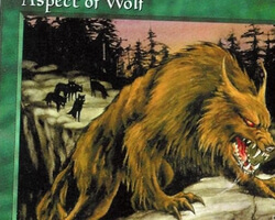 Magic the Gathering 5th Edition Card: Aspect of Wolf