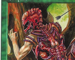 Magic the Gathering 5th Edition Card: Carapace