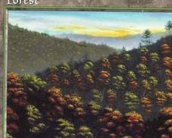 Magic the Gathering 5th Edition Card: Forest (a)