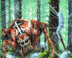 Magic the Gathering 5th Edition Card: Giant Spider