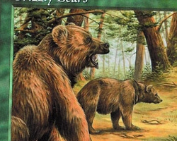 Magic the Gathering 5th Edition Card: Grizzly Bears