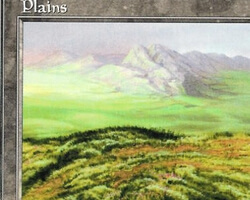 Magic the Gathering 5th Edition Card: Plains (d)