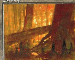 Magic the Gathering 5th Edition Card: Swamp (a)