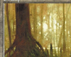 Magic the Gathering 5th Edition Card: Swamp (b)