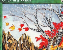 Magic the Gathering 5th Edition Card: Untamed Wilds