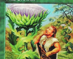 Magic the Gathering 5th Edition Card: Wild Growth