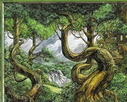 Magic the Gathering 6th Edition Card: Forest (d)