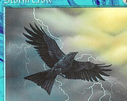 Magic the Gathering 6th Edition Card: Storm Crow