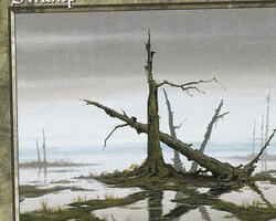 Magic the Gathering 6th Edition Card: Swamp (a)
