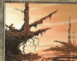 Magic the Gathering 6th Edition Card: Swamp (d)