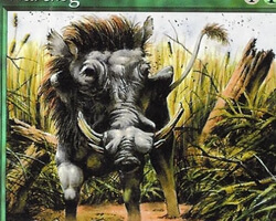 Magic the Gathering 6th Edition Card: Warthog
