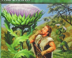 Magic the Gathering 6th Edition Card: Wild Growth