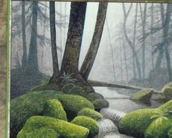 Magic the Gathering 7th Edition Card: Forest (a)