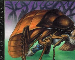 Magic the Gathering 7th Edition Card: Giant Cockroach