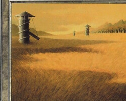 Magic the Gathering 7th Edition Card: Plains (b)