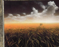 Magic the Gathering 7th Edition Card: Plains (c)