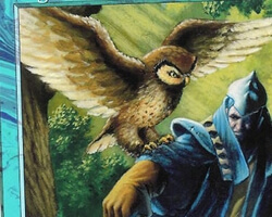 Magic the Gathering 7th Edition Card: Sage Owl