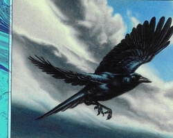 Magic the Gathering 7th Edition Card: Storm Crow