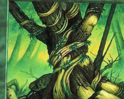 Magic the Gathering 7th Edition Card: Wild Growth
