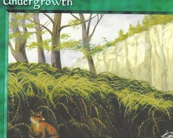 Magic the Gathering Alliances Card: Undergrowth