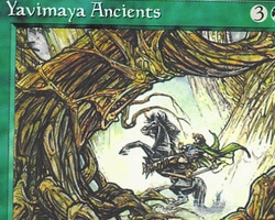 Magic the Gathering Alliances Card: Yavimaya Ancients