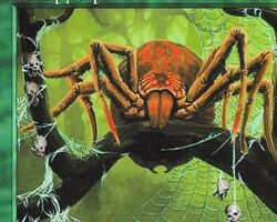 Magic the Gathering Anthologies Card: Canopy Spider from Tempest