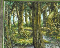 Magic the Gathering Anthologies Card: Forest (b) from Portal Second Age