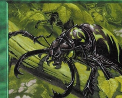 Magic the Gathering Battle Royale Card: Pincher Beetles from Tempest