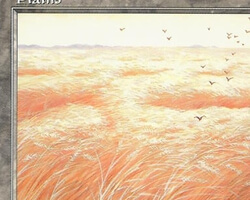 Magic the Gathering Battle Royale Card: Plains (a) from Portal: Three Kingdoms