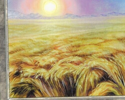 Magic the Gathering Battle Royale Card: Plains (h) from 5th Edition