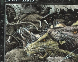 Magic the Gathering Battle Royale Card: Sewer Rats from Mirage