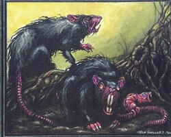 Magic the Gathering Chronicles Card: Bog Rats from The Dark