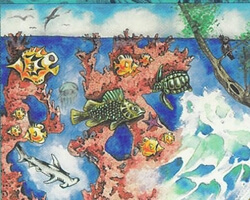 Magic the Gathering Homelands Card: Coral Reef