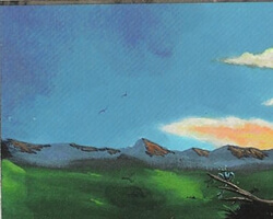 Magic the Gathering Ice Age Card: Plains (b)