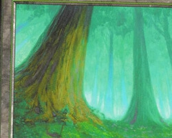 Magic the Gathering Mercadian Masques Card: Forest (b)