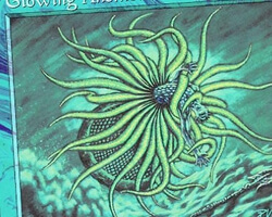 Magic the Gathering Mercadian Masques Card: Glowing Anemone