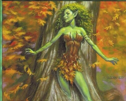Magic the Gathering Mercadian Masques Card: Rushwood Dryad