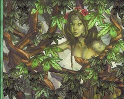 Magic the Gathering Mercadian Masques Card: Vine Trellis