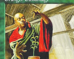 Magic the Gathering Mirage Card: Granger Guildmage