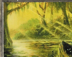 Magic the Gathering Mirage Card: Swamp (a)