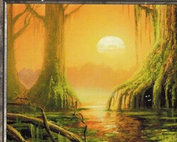 Magic the Gathering Mirage Card: Swamp (c)
