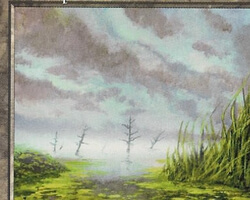 Magic the Gathering Mirage Card: Swamp (d)