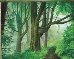 Magic the Gathering Odyssey Card: Forest (a)
