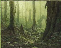 Magic the Gathering Odyssey Card: Forest (b)
