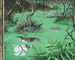 Magic the Gathering Odyssey Card: Swamp (a)
