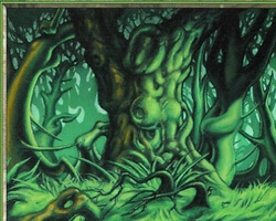 Magic the Gathering Onslaught Card: Forest (a)