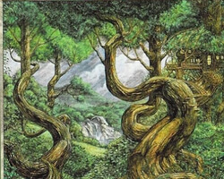 Magic the Gathering Portal Second Age Card: Forest (a)
