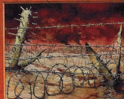 Magic the Gathering Prophecy Card: Barbed Field